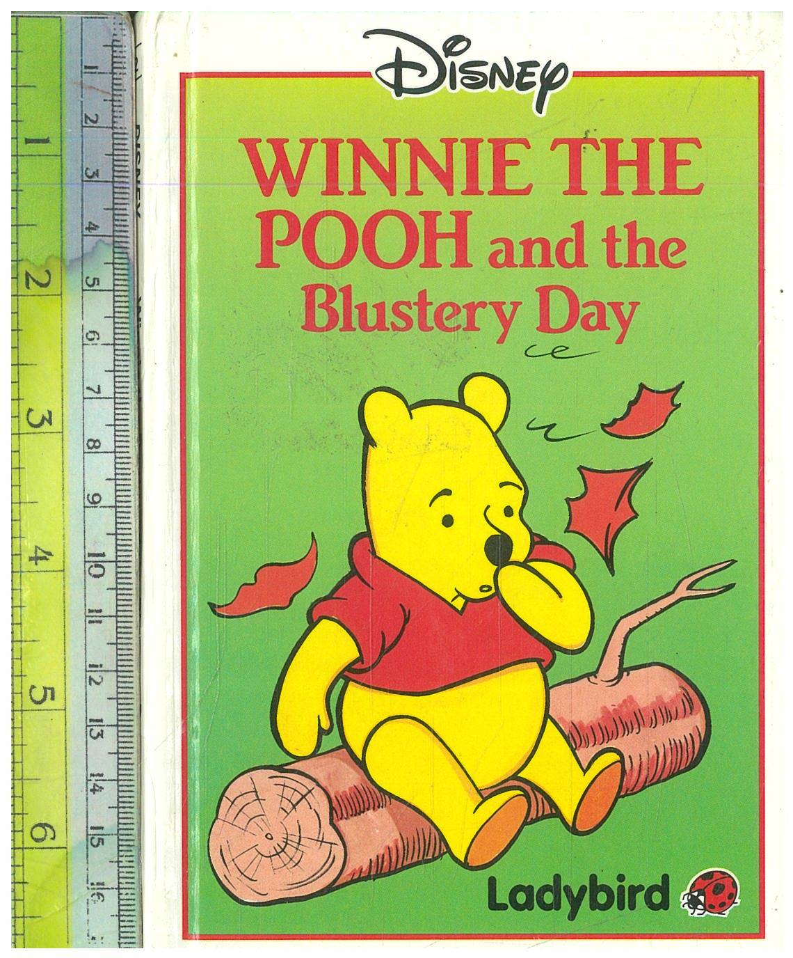 Pooh and the Blustery Day