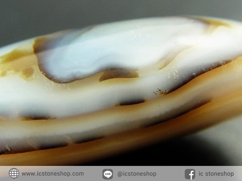 เดนไดทริก อาเกต Dendritic Agateขัดมันจากมาดากัสการ์ (15g)