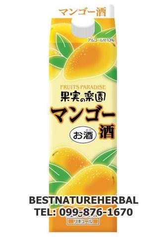 เหล้ามะม่วงญี่ปุ่น แอลกอฮอล์ 10% บรรจุ 500 มล.
