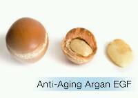 ลดเลือดริ้วรอยด้วย โกรทแฟคเตอร์ จาก ผลอาร์แกน Argan Growth Factor -สามารถลดการหดเกร็งตัวของกล้ามเนื้อที่ใบหน้า จึงทำให้ริ้วรอยจากการแสดงอารมณ์ลดลง -ช่วยให้ริ้วรอยลึกตื้นขึ้น และป้องกันการเกิดริ้วรอยใหม่ -เสริมการสร้างผิวชั้นนอกให้แข็งแรง -ปกป้องผิวให้สามารถรับมือกับอากาศที่เปลี่ยนแปลง -ริ้วรอยดูลดเลือน