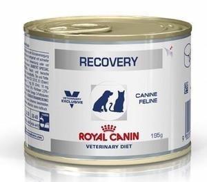 Royal canin Recovery อาหารสัตว์ป่วยพักฟื้น หนึ่งโหล 1250รวมส่ง