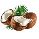 Coconut Oil 200 mg. / น้ำมันมะพร้าวสกัด 200 มิลลิกรัม
