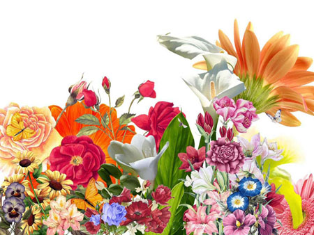 หัวน้ำหอม กลิ่น sweet floral -PC0091
