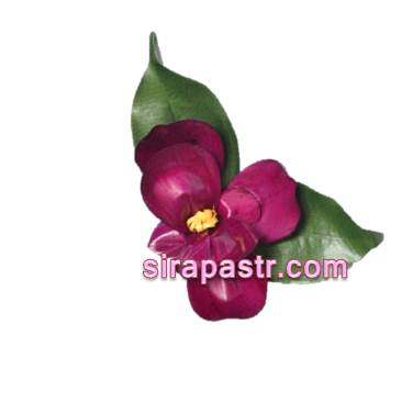 ดอกกล้วยไม้แวนด้า-ประเทศสิงคโปร์ (ช่อดอกไม้ติดเสื้อ) **สินค้าจำนวนจำกัด**