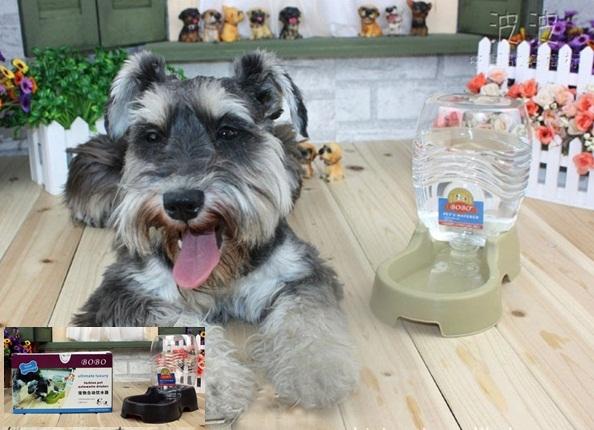 ที่ให้น้ำสุนัขและแมว (ส่งฟรี)