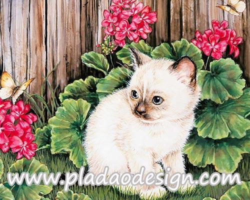 กระดาษสาพิมพ์ลาย สำหรับทำงาน เดคูพาจ Decoupage แนวภาำพ แมวตัวน้อยขนสีขาวอมน้ำตาลอ่อนๆ ขนฟูๆ นั่้งเล่นริมรั้ว
