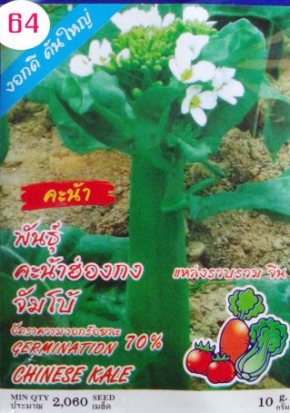 เมล็ดคะน้าฮ่องกง 10กรัม(2000เมล็ด)