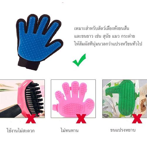 ถุงมือแปรงขนสัตว์