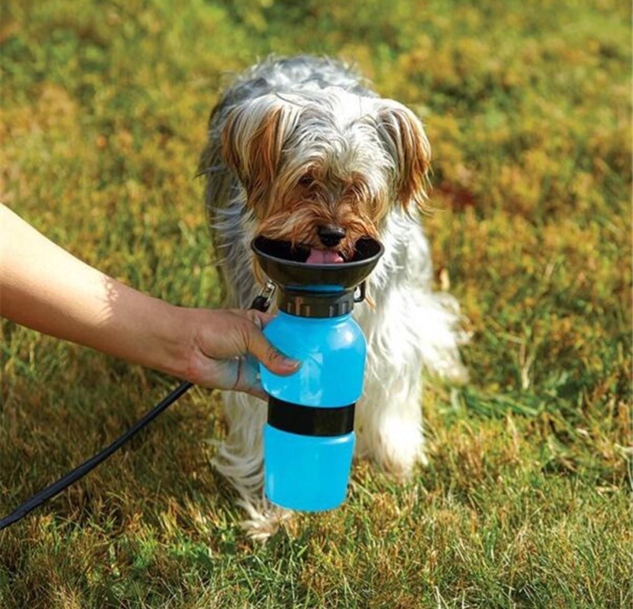ขวดน้ำสัตว์เลี้ยงแบบพกพา ขวดน้ำหมา ขวดน้ำ ขวดให้น้ำ สุนัขและแมว แบบพกพา