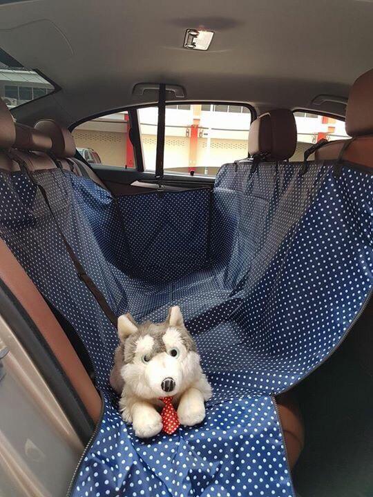 ที่รองเบาะรถยนต์สำหรับสุนัข ด้านหลัง 2 ที่นั่ง 2 in 1 สีน้ำเงินลายจุด